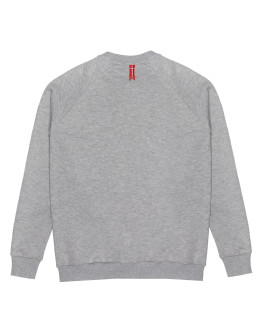 Мужской свитшот Sønner af vinden Great expedition heather grey